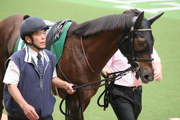 デアリングハート パドック(07/06/10・第24回 エプソムカップ)