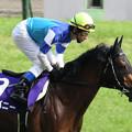 カンパニー 返し馬(09/06/07・第59回 安田記念)