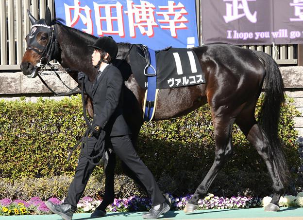 ヴァルコス パドック(20/02/02・セントポーリア賞)