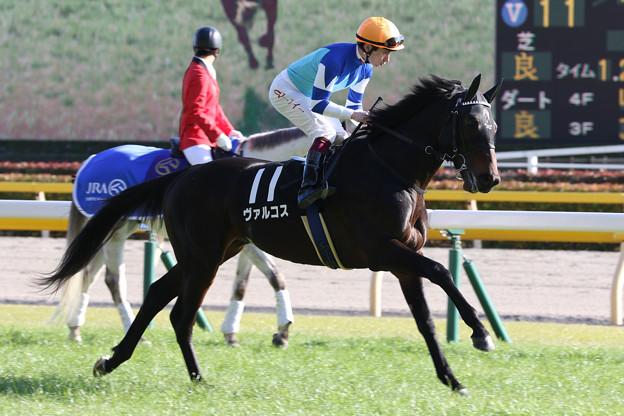 ヴァルコス 返し馬(20/02/02・セントポーリア賞)