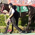 コントレイル パドック(19/11/16・第24回 東京スポーツ杯 2歳ステークス)