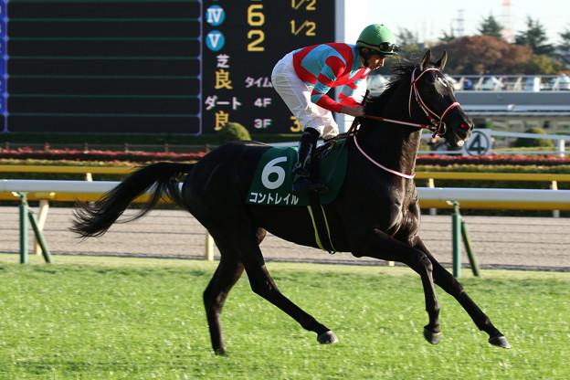 コントレイル 返し馬(19/11/16・第24回 東京スポーツ杯 2歳ステークス)