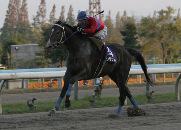 テンリットル レース_1(05/10/30・第53回 北國王冠)