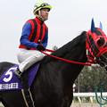 ジャングルスマイル 馬場入場(11/11/13・第59回 北國王冠)