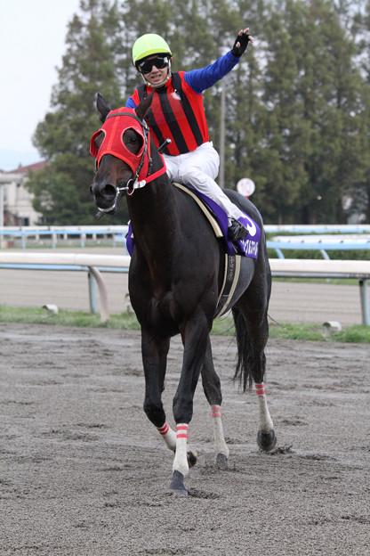 ジャングルスマイル レース後_3(11/11/13・第59回 北國王冠)
