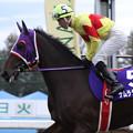 ナムラダイキチ 返し馬(12/11/11・第60回 北國王冠)