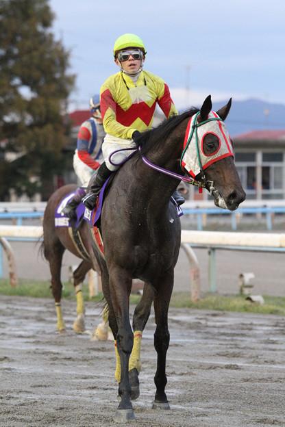 ナムラダイキチ レース後_1(12/11/11・第60回 北國王冠)