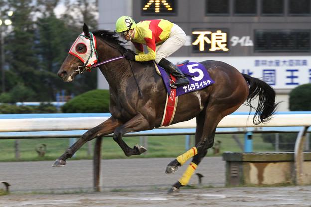ナムラダイキチ レース(12/11/11・第60回 北國王冠)