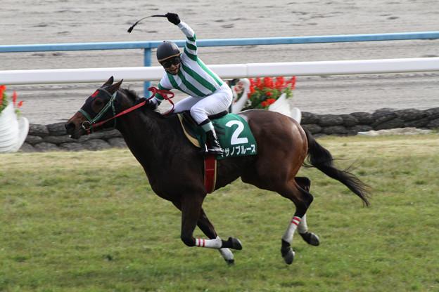 マサノブルース レース(12/11/10・第14回 京都ジャンプステークス)