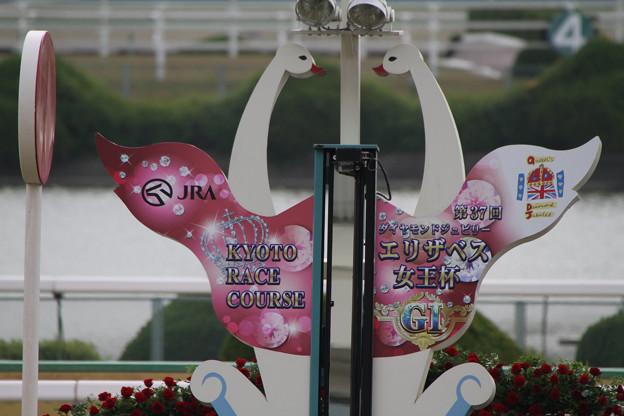 京都競馬場 ゴール板_2(12/11/10)