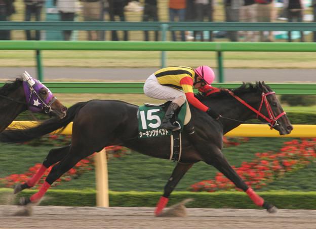 シーキングザベスト レース(06/10/28・第11回 東京中日スポーツ杯 武蔵野ステークス)