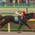 Photos: シーキングザベスト レース(06/10/28・第11回 東京中日スポーツ杯 武蔵野ステークス)