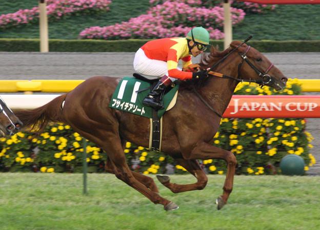 フサイチアソート レース(07/11/17・第12回 東京スポーツ杯 2歳ステークス)