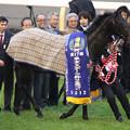 Photos: 第17回 東京スポーツ杯 2歳ステークス 口取り(12/11/17)