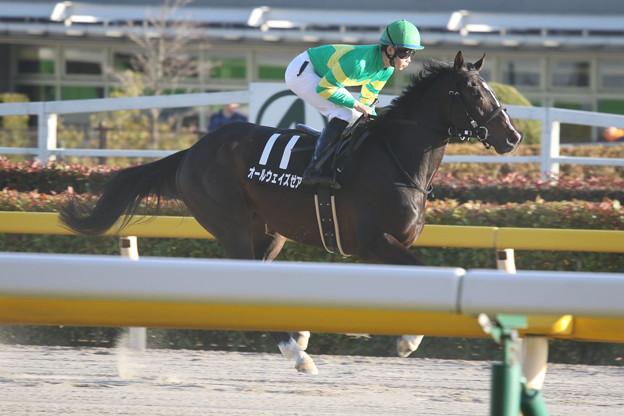 オールウェイズゼア 返し馬(20/02/23・大島特別)