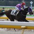 クールマキシム レース(20/02/22・1R)