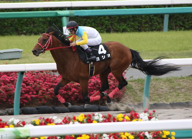 Photos: ヨシオ レース(18/04/14・下総ステークス)