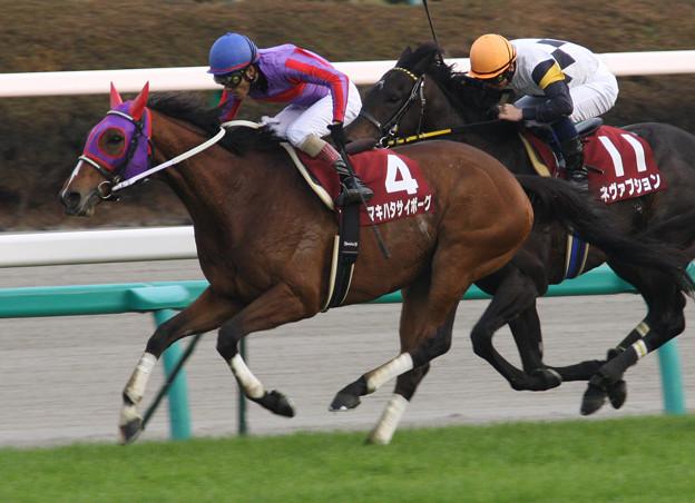 マキハタサイボーグ レース(07/12/01・第41回 スポーツニッポン賞 ステイヤーズステークス)