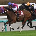 Photos: マキハタサイボーグ レース(07/12/01・第41回 スポーツニッポン賞 ステイヤーズステークス)