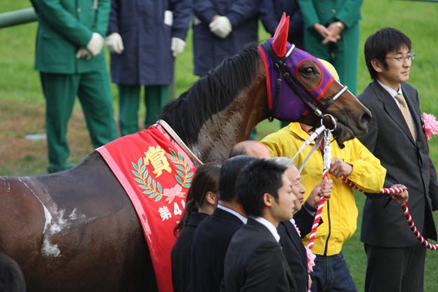 マキハタサイボーグ(07/12/01・第41回 スポーツニッポン賞 ステイヤーズステークス)