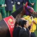 Photos: マキハタサイボーグ(07/12/01・第41回 スポーツニッポン賞 ステイヤーズステークス)