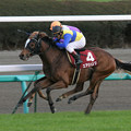 Photos: エアジパング レース(08/12/06・第42回 スポーツニッポン賞 ステイヤーズステークス)