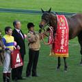 Photos: 第42回 スポーツニッポン賞 ステイヤーズステークス 口取り(08/12/06)