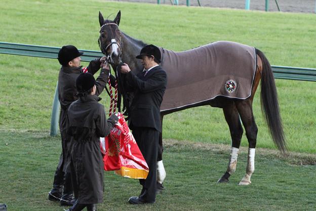 トウカイトリック_1(12/12/01・第46回 スポーツニッポン賞 ステイヤーズステークス)