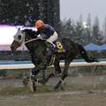 タフネスゴールド レース(05/12/11・第41回 中日杯)