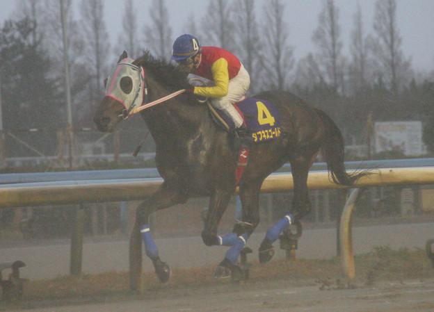 タフネスゴールド レース(06/12/17・第42回 中日杯)