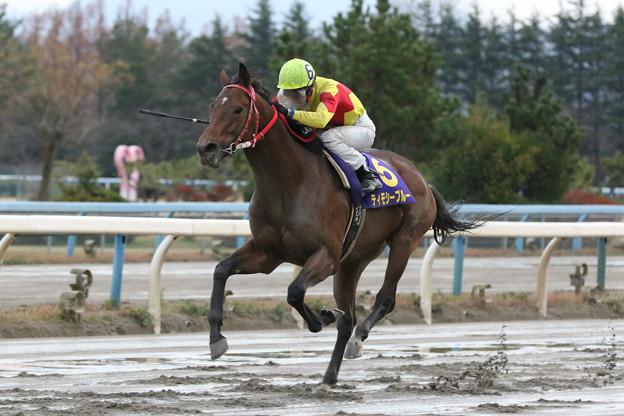 ティモシーブルー レース(19/12/08・第55回 中日杯)