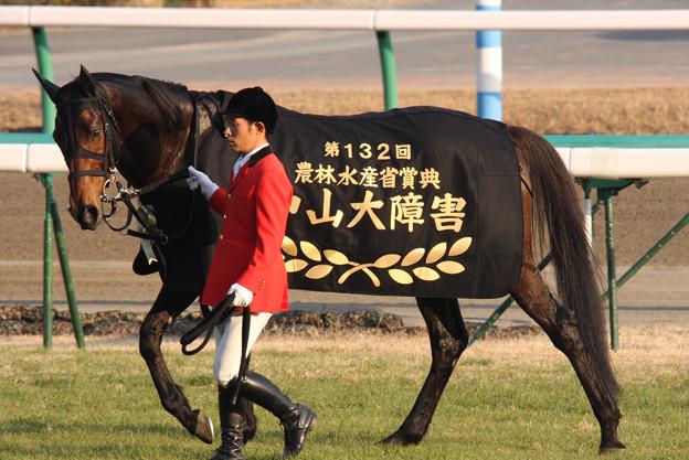 キングジョイ_2(09/12/26・第132回 中山大障害)