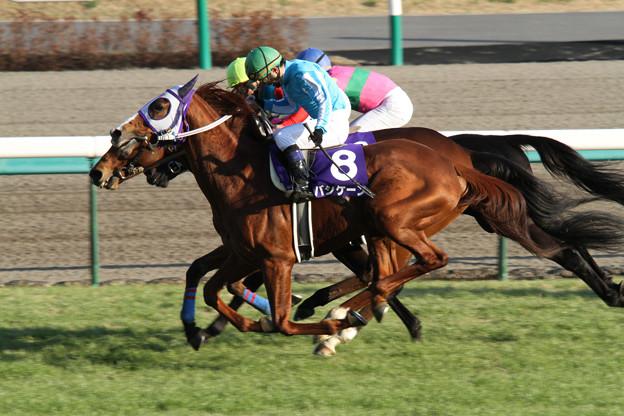 バシケーン レース(10/12/25・第133回 中山大障害)