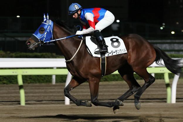 コージーサンラッド 返し馬(20/12/09・受章祝賀デーフィナーレ賞)