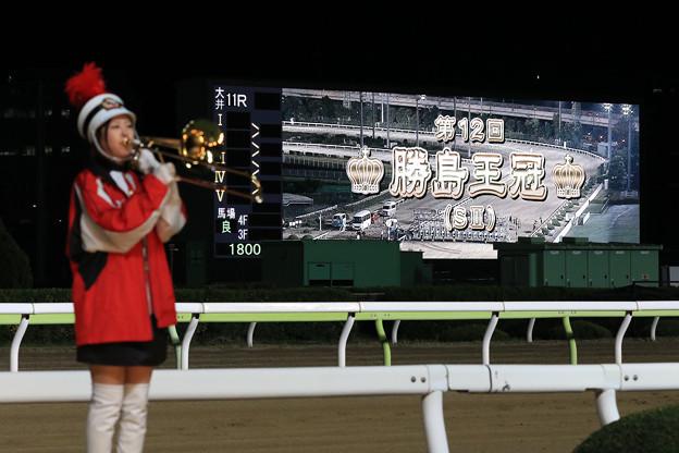 Photos: 第12回 勝島王冠(20/12/09)