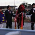 Photos: 第16回 笠松グランプリ 口取り(20/12/03)