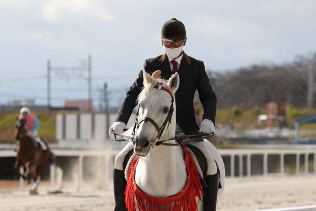 誘導馬 エクスペルテ_1(20/12/03)