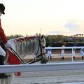 Photos: 誘導馬 エクスペルテ_7(20/12/03・第16回 笠松グランプリ)