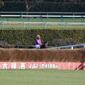 Photos: メイショウダッサイ_2(20/12/26・第143回 中山大障害)