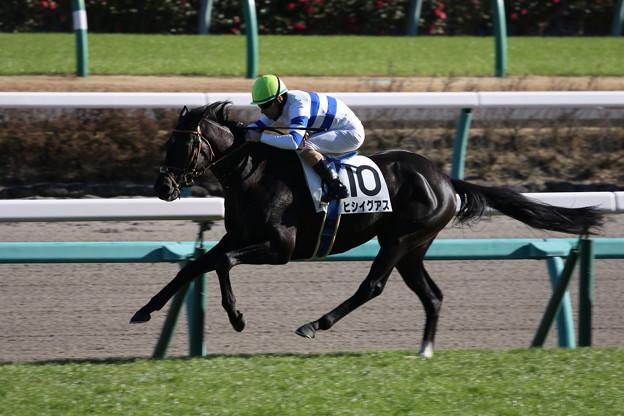 ヒシイグアス レース(18/12/15・7R・中山競馬場)