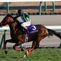 Photos: ケンホファヴァルト レース_2(20/12/26・第143回 中山大障害)