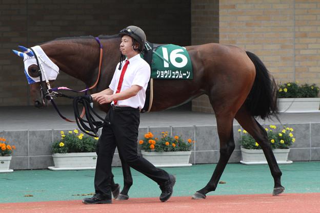 ショウリュウムーン パドック(12/07/22・第60回 トヨタ賞中京記念)