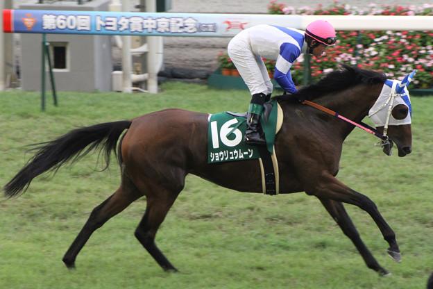 ショウリュウムーン 返し馬(12/07/22・第60回 トヨタ賞中京記念)