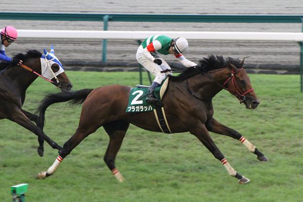 Photos: フラガラッハ レース_2(12/07/22・第60回 トヨタ賞中京記念)