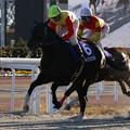 Photos: フーククリスタル レース(20/12/30・第24回 ライデンリーダー記念)