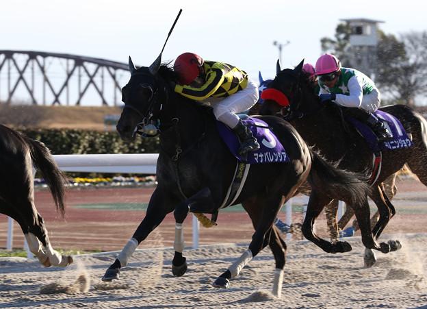 マナバレンシア レース(20/12/30・第24回 ライデンリーダー記念)