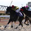 Photos: マナバレンシア レース(20/12/30・第24回 ライデンリーダー記念)
