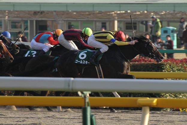 ゴールスキー レース(14/02/02・第28回 根岸ステークス)