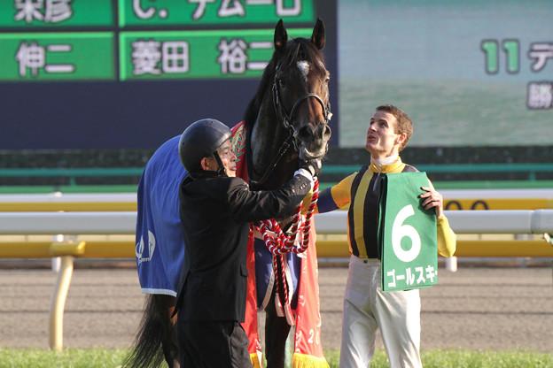 ゴールスキー_2(14/02/02・第28回 根岸ステークス)