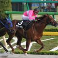 サクラレグナム レース(14/05/18・BSイレブン賞)
